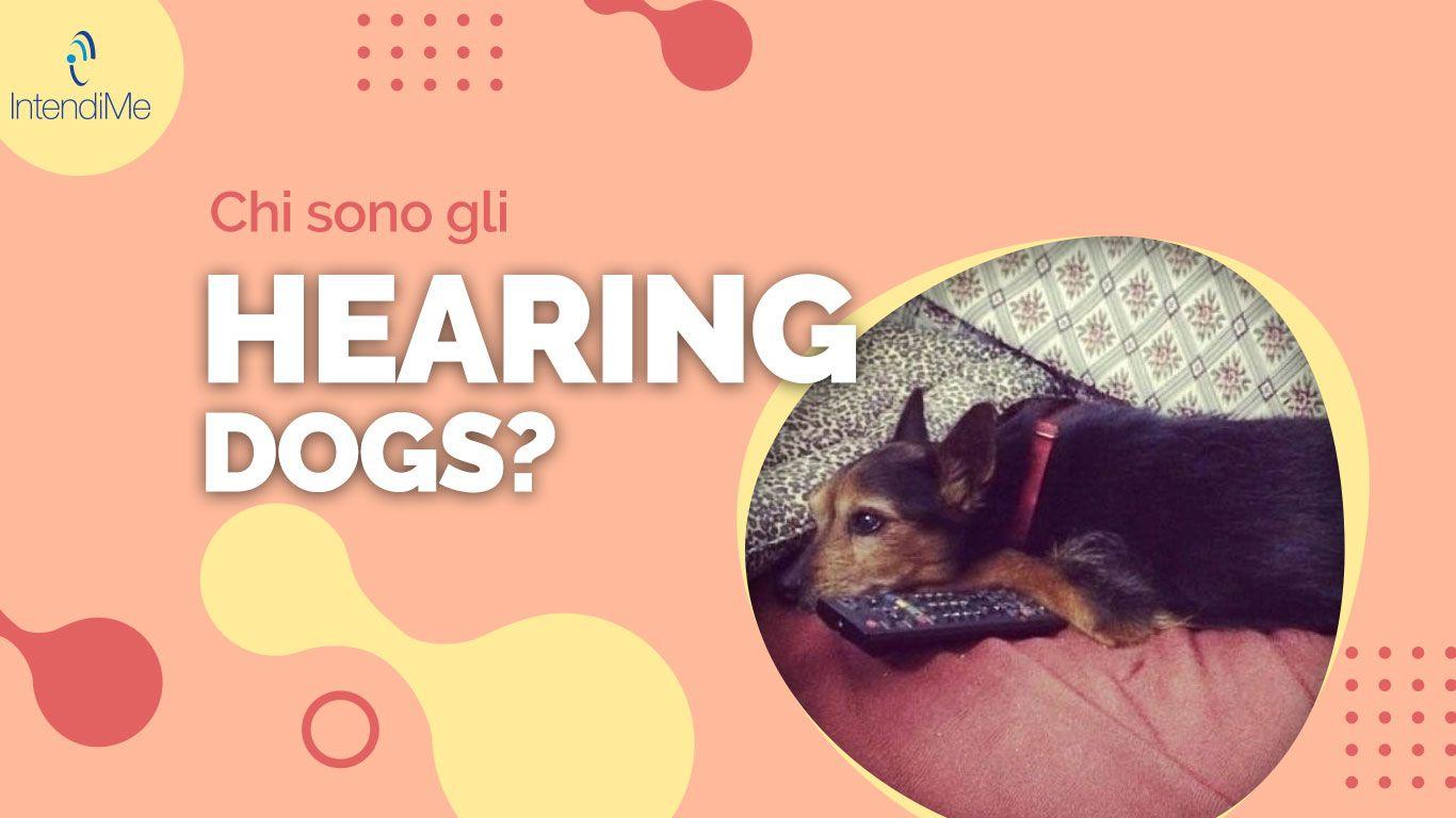 Hearing Dogs cani per sordi