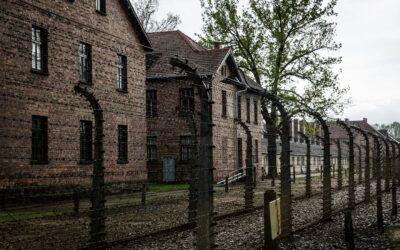 Giornata della Memoria: l'Olocausto tra luci e ombre